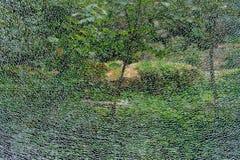 Abstrakter Hintergrund, die Beschaffenheit des defekten gepanzerten Glases auf dem Hintergrund des grünen Waldes stockbilder