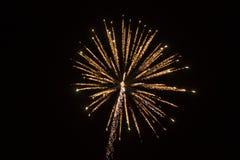 Abstrakter Hintergrund: Feuerwerks-Rosa und Goldschein-Baum Lizenzfreie Stockbilder