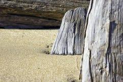 Abstrakter Hintergrund mit Holz und Sand Lizenzfreie Stockfotos