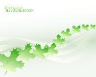 Abstrakter Hintergrund mit Linien und Blättern Abbildung des Vektor EPS10 Lizenzfreie Stockfotos