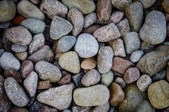 Abstrakter Hintergrund mit trockenen runden reeble Steinen Lizenzfreies Stockfoto