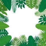 Abstrakter Hintergrund mit tropischen Blättern Dschungelmuster floral vektor abbildung