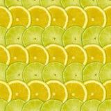 Abstrakter Hintergrund mit Zitrusfruchtscheiben der Zitrone und des Kalkes Stockbild