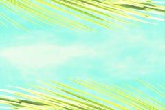 Abstrakter Hintergrund von gelben Niederlassungen einer Palme mit Blick auf den blauen Himmel stockbild