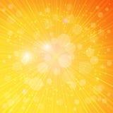 Abstrakter Hintergrundvektor des natürlichen Lichtes Stockbilder