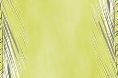 Abstrakter kakifarbiger Hintergrund mit grauen Niederlassungen von Palmen lizenzfreie stockfotos
