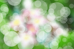 Abstrakter Kreis-bokeh Hintergrund der Blume Stockbild