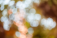 Abstrakter Kreis-bokeh Hintergrund von Christmaslight stockbilder