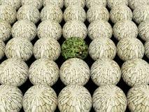 Abstrakter Kugel Natur-Hintergrund 2 Lizenzfreies Stockbild