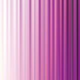 Abstrakter magentaroter Streifenhintergrund Lizenzfreie Stockbilder