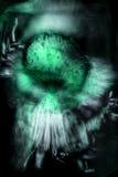 Abstrakter Mikrograph von Blumenteilen einer Anlage des hölzernen Sauerampfers Stockfoto