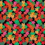 Abstrakter nahtloser mit Blumenhintergrund mit Kapuzinerkäse und Blättern Lizenzfreie Stockfotografie