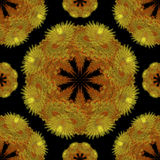 Abstrakter nahtloser Musterhintergrund Gelbe Blume Stockbilder