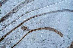 Abstrakter natürlicher Hintergrund mit Mustern des Eises Stockbilder