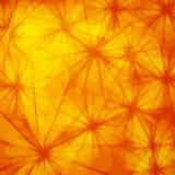 Abstrakter orange Hintergrund Stockfotografie