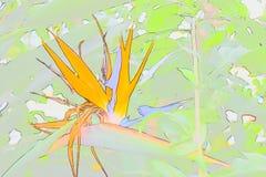 Abstrakter Paradiesvogel stockbilder