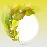 Abstrakter Rahmen mit grünen Blättern Stockfoto