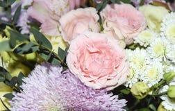 Abstrakter rosafarbener mit Blumenhintergrund und Aster rosa gelbes empfindliches L Lizenzfreies Stockbild