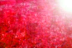 Abstrakter roter Hintergrund Lizenzfreie Stockfotografie