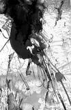 Abstrakter Schwarzweiss-Anstrich Stockfotografie