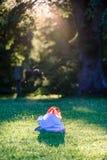 abstrakter Sommerwald mit Plastiktasche Stockbilder