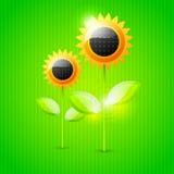 Abstrakter Sonnenblumehintergrund Stockbilder
