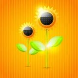 Abstrakter Sonnenblumehintergrund Lizenzfreies Stockfoto