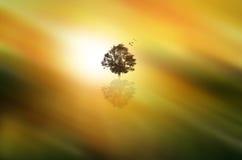 Abstrakter träumerischer Baum und Vögel, die über ihn fliegen Lizenzfreies Stockfoto