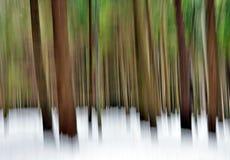 Abstrakter Wald im Winter Lizenzfreie Stockfotos