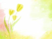 Abstrakter Watercolourhintergrund mit Tulpen Stockbild