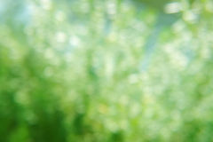 Abstrakter weicher Hintergrund Lizenzfreies Stockfoto