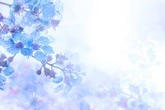 Abstrakter weicher süßer blauer purpurroter Blumenhintergrund von Plumeria Frangipani Stockfotografie