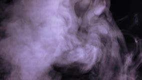Abstrakter Wildwasserdampf auf schwarzem Hintergrund stock video