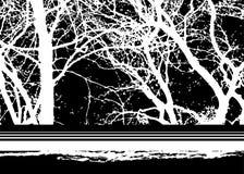 Abstrakter Winterhintergrund Lizenzfreies Stockfoto
