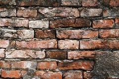 Abstraktes altes Wandshow-Ziegelsteinmuster Lizenzfreies Stockfoto