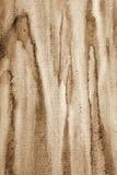 Abstraktes Aquarell auf Papierbeschaffenheit als Hintergrund In der Sepiatonne Lizenzfreie Stockfotografie
