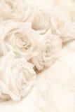 Abstraktes Aquarell auf Papierbeschaffenheit als Hintergrund Im Sepia zu Stockfotos