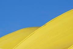 Abstraktes Architektursonderkommando moderne Architektur, gelbe Platten auf Gebäudefassade Stockfoto