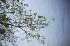 Abstraktes BildKunstdruckpapier Lizenzfreie Stockfotos
