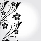Abstraktes Blumenelement für Auslegung Stockfotos