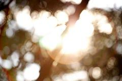 Abstraktes bokeh und Blendenfleck Stockfotos