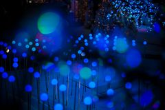 Abstraktes bokeh würzen blauer purpurroter heller Funkelnhintergrund für Weihnachts- und des neuen Jahresfestival Stockfotos