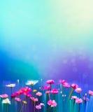 Abstraktes buntes Ölgemälde rot, rosa Kosmosblume stock abbildung