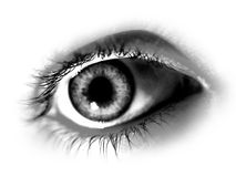 Abstraktes Desaturated Auge stock abbildung