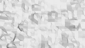 Abstraktes einfaches niedriges wellenartig bewegendes Schwarzweiss-Poly3D Oberflächen als eleganter Hintergrund Graue geometrisch vektor abbildung