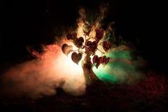 Abstraktes Feld mit Baum und Herzen auf ihm hinter dunklem nebeligem getontem Himmel Liebesbaum von Träumen Valentinsgrußkonzepth Stockbild