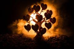 Abstraktes Feld mit Baum und Herzen auf ihm hinter dunklem nebeligem getontem Himmel Liebesbaum von Träumen Valentinsgrußkonzepth Stockbilder