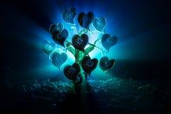 Abstraktes Feld mit Baum und Herzen auf ihm hinter dunklem nebeligem getontem Himmel Liebesbaum von Träumen Valentinsgrußkonzepth Stockfotografie