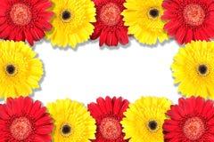 Abstraktes Feld mit den gelben und roten Blumen Stockfotografie