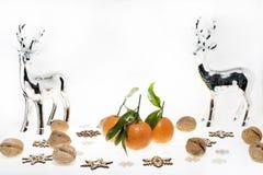 Abstraktes Foto der Weihnachtsmandarinen Lizenzfreie Stockfotos